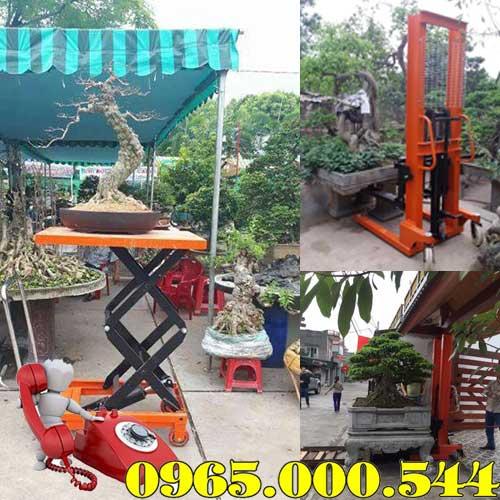 Địa chỉ bán xe nâng cây cảnh chậu cảnh tại Nam Định